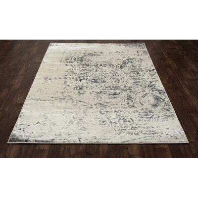 Devay Gray Area Rug Rug Size: 53 x 77
