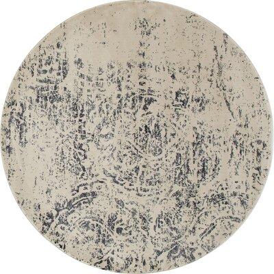 Devay Gray Area Rug Rug Size: 22 x 37