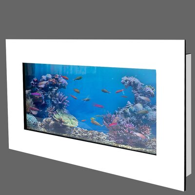 Aussie 21 Gallon Aquarium Tank Color: White