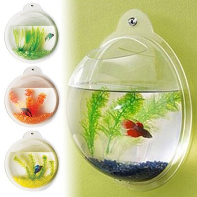 Fish Bubble Deluxe Acrylic Wall Mounted Aquarium Tank