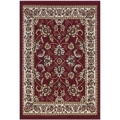 Homesense Dark Red Area Rug