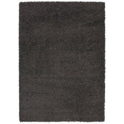 Charcoal Gray Area Rug Rug Size: 5 x 7