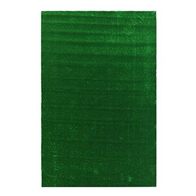 Grassland Green Indoor/Outdoor Area Rug Rug Size: 66 x 93
