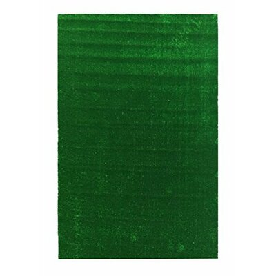 Grassland Green Indoor/Outdoor Area Rug Rug Size: 311 x 66