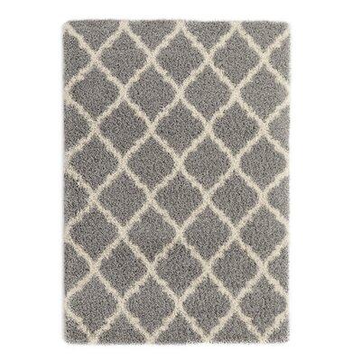 Gray Area Rug Rug Size: 67 x 93