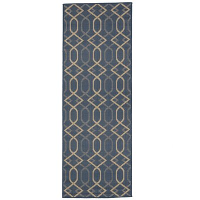Hooper Blue Indoor/Outdoor Area Rug Rug Size: Runner 27 x 7