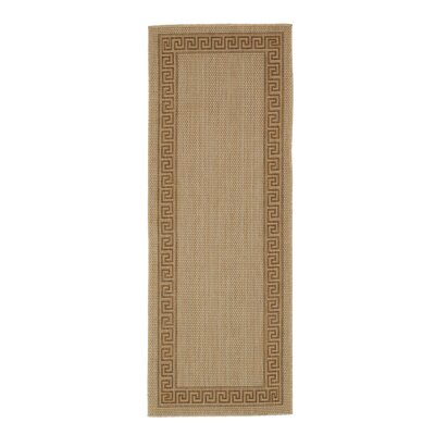 Plumeria Beige Indoor/Outdoor Area Rug Rug Size: Runner 27 x 7