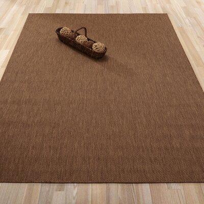 Chapman Dark Brown Indoor/Outdoor Area Rug Rug Size: Rectangle 53 x 73