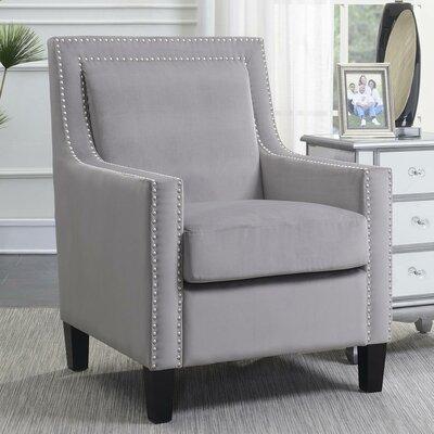 Trenton Velvet Armchair Upholstery: Gray