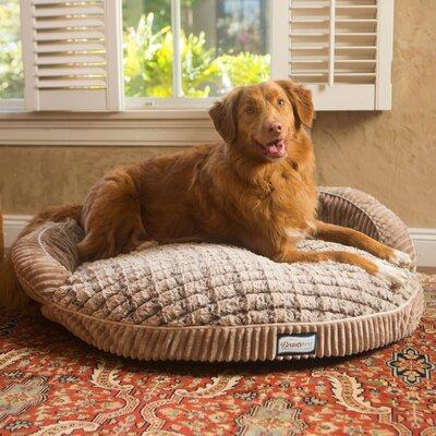 Beautyrest Ortho Sleep Orthopedic Memory Foam Pet Bed Size: 8 H x 36 W x 36 D