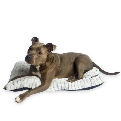 Cesar Millan Ultimate Dog Mat Size: Medium (36 W x 3 D x 24 H), Color: Gray