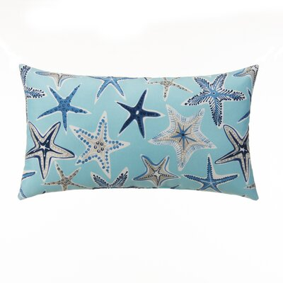 Starstruck Outdoor Lumbar Pillow Color: Blue