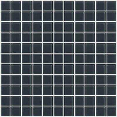 1 x 1 Glass Mosiac Tile in Dark Gray (Set of 2)