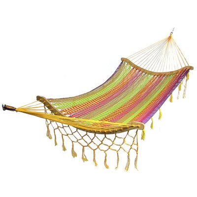 Cotton Tree Hammock Color: Multi