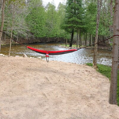 Portable Double Camping Hammock Color: Gray/Red