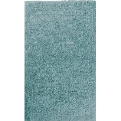 Hizer Sponge Bath Sheet Color: Baltic