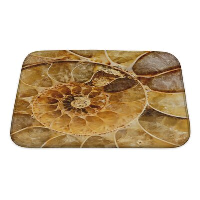 Marine Ammonite Fossil Bath Rug Size: Small