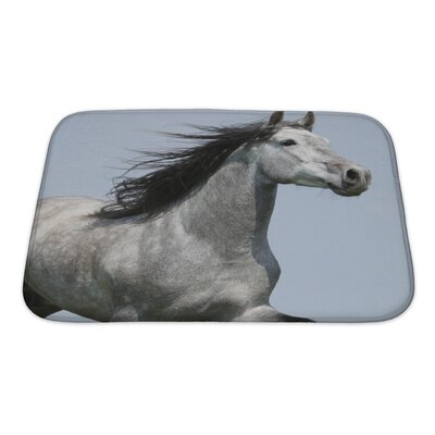 Animals Head of Running Carthusian Horse with Flattering Mane Isolated Bath Rug Size: Small