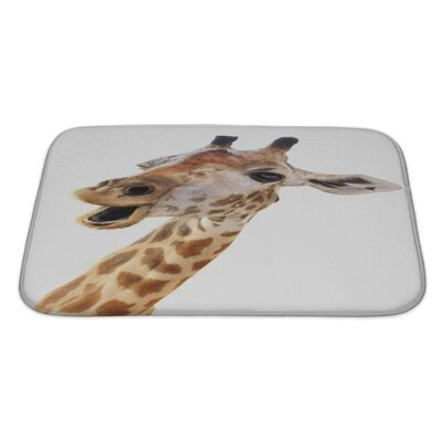 Animals Giraffe Head Face Look Funny Isolated Bath Rug Size: Large