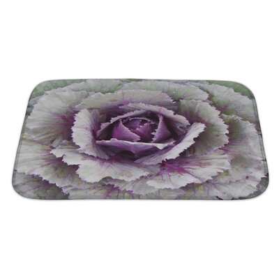 Flowers Ornamental Cabbage Bath Rug Size: Large