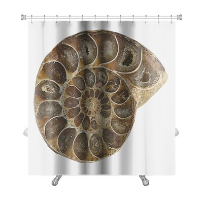 Marine Ammonite Fossil Premium Shower Curtain
