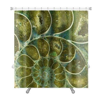 Marine Ammonite Fossil Premium Shower Curtain