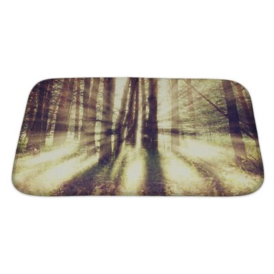 Nature Vintage Nature Bath Rug Size: Large