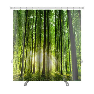 Landscapes Beautiful Forest Premium Shower Curtain