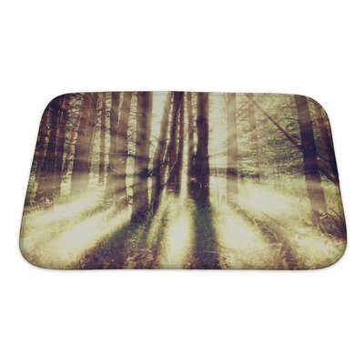 Nature Vintage Nature Bath Rug Size: Small