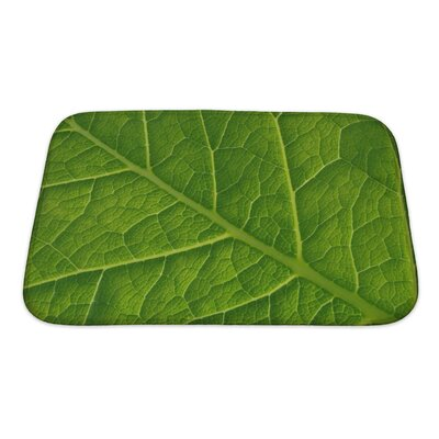 Leaves Abstract Leaf Pattern Bath Rug Size: Small