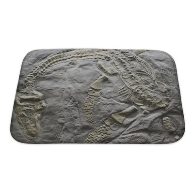 Dinosaurs Skeleton of Ancient Dinosaur Rock, Evolution Bath Rug Size: Small