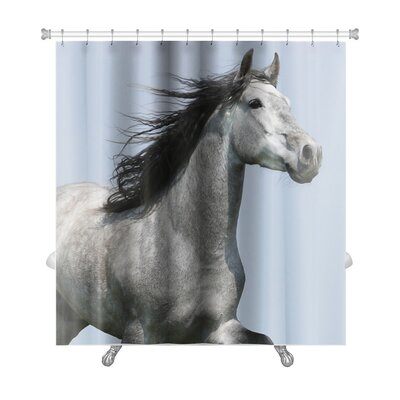Animals Head of Running Carthusian Horse with Flattering Mane Isolated Premium Shower Curtain
