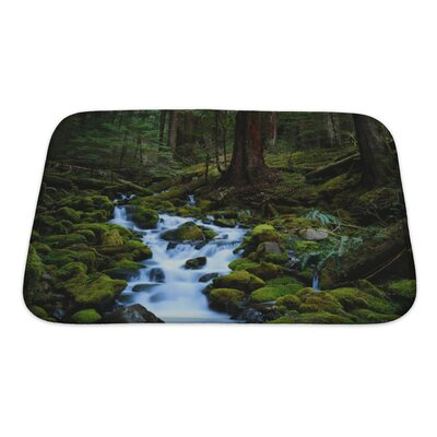 Landscapes Beautiful Mountains Landscape Bath Rug Size: Small