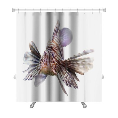 Fish Venomous Fish, Lionfish Isolated Over Premium Shower Curtain