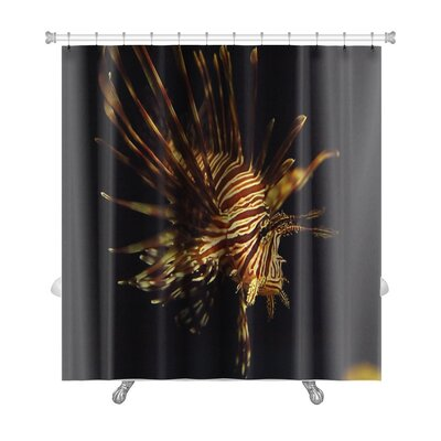 Fish Pterois Antennata Ragged Finned Firefish Lionfish Broadbarred Premium Shower Curtain