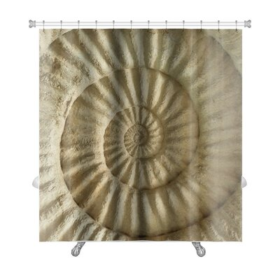 Marine Closeup of Ammonite Prehistoric Fossil on the Surface of the Stone Premium Shower Curtain