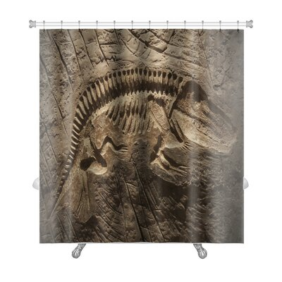 Animals Model Dinosaur Fossil Premium Shower Curtain