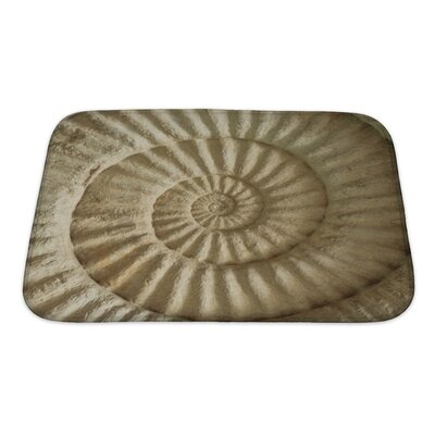 Marine Closeup of Ammonite Prehistoric Fossil on the Surface of the Stone Bath Rug Size: Small