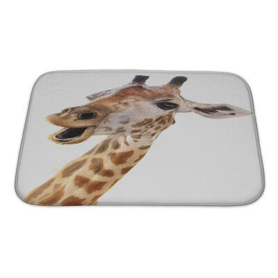 Animals Giraffe Head Face Look Funny Isolated Bath Rug Size: Small