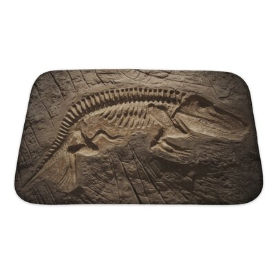 Animals Model Dinosaur Fossil Bath Rug Size: Small