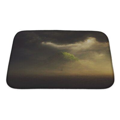 Nature the Sun is Shining Through the Clouds on a Single Tree in the Field Bath Rug Size: Small