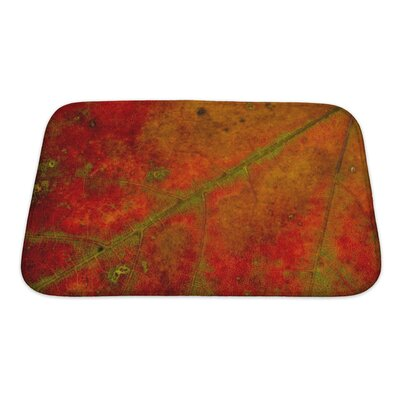 Gamma Structure of an Autumn Leaf Bath Rug Size: Small