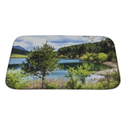 Landscapes Lake Under a Cloudy Sky Bath Rug Size: Large