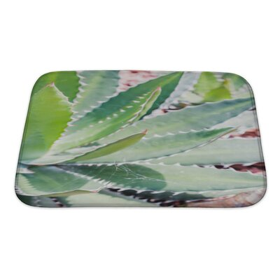 Nature Close Up Cactus Leaf Pattern Bath Rug Size: Small