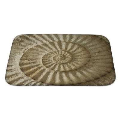 Marine Closeup of Ammonite Prehistoric Fossil on the Surface of the Stone Bath Rug Size: Large