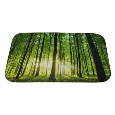 Landscapes Beautiful Forest Bath Rug Size: Large