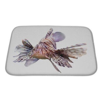 Fish Venomous Fish, Lionfish Isolated Over Bath Rug Size: Small