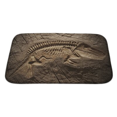 Animals Model Dinosaur Fossil Bath Rug Size: Large