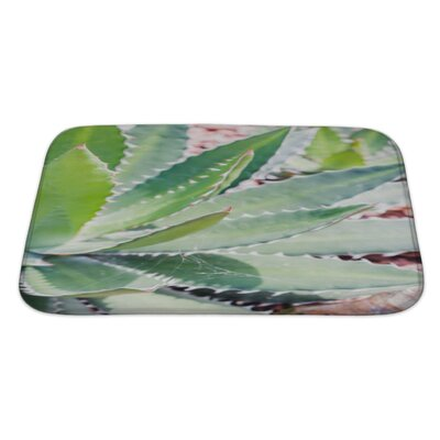 Nature Close Up Cactus Leaf Pattern Bath Rug Size: Large