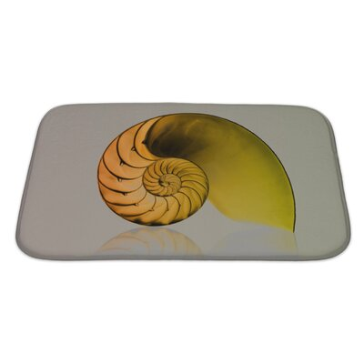 Marine Fibonacci Pattern on Shell Viewed Spiral from Front Bath Rug Size: Large